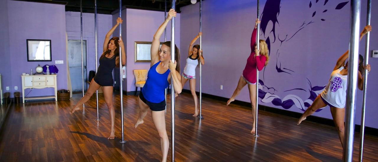 Beginner Level 1 & 2 Spinning Pole Fitness Instructor Training